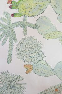 Angela Ferolla–Fremantle artist
