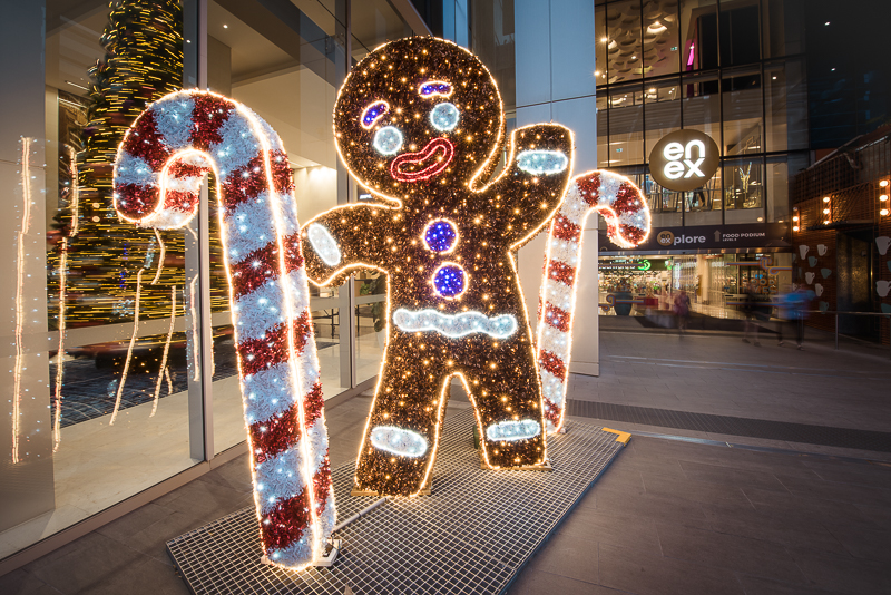Giant Gingerbread Fellow